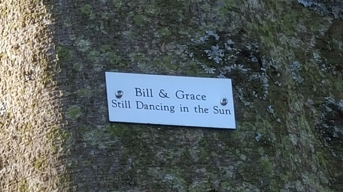 Memorial Plaque. Still dancing in the sun.